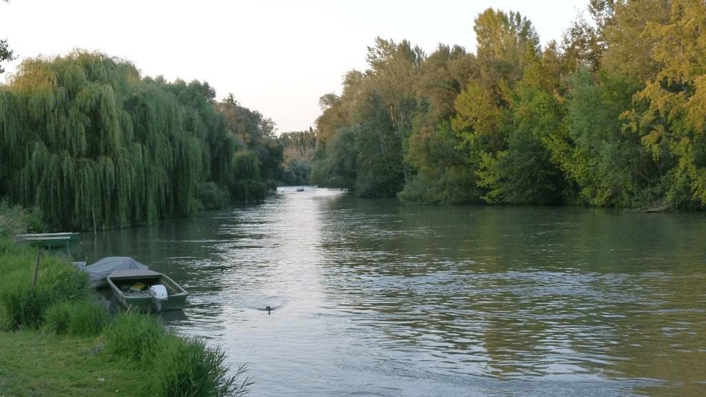 A Mosoni-Duna vadregényes tája nemcsak a horgászok szívét dobogtatja meg. (Fotó: Wikipedia)