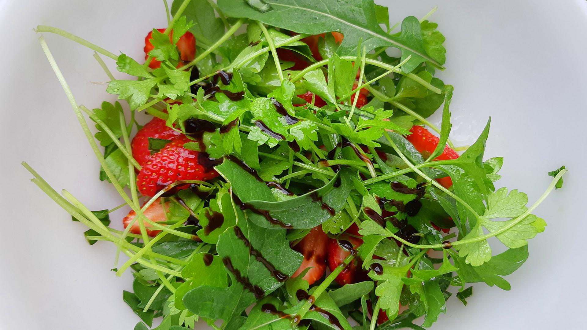 Házi vitaminbombagyár: termessz mini salátát!