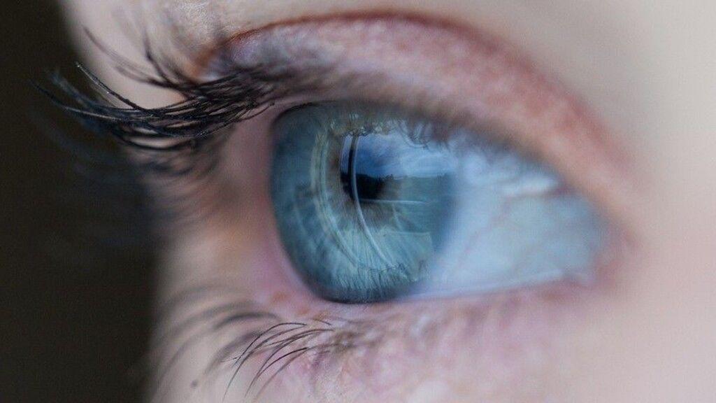 Óriási felfedezésben vett részt a Semmelweis Egyetem: visszanyerhető a látás a kígyók segítségével