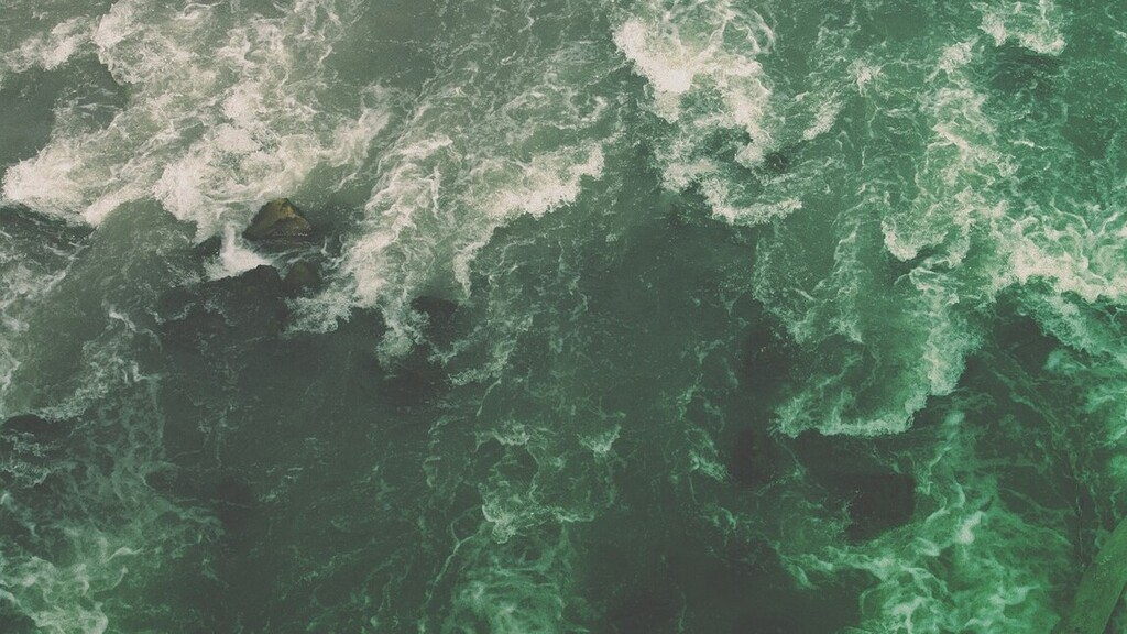 Cápatámadásban halt meg egy szörfös