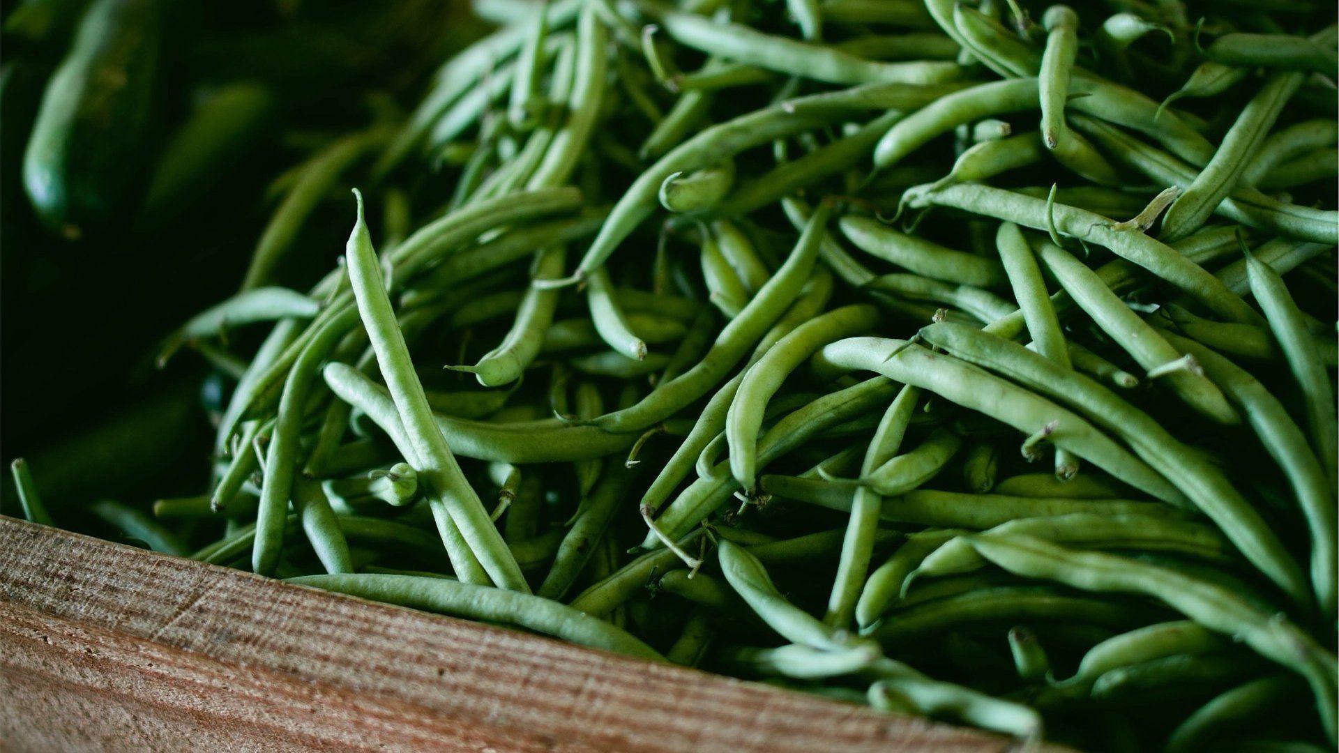 zöldbab bab