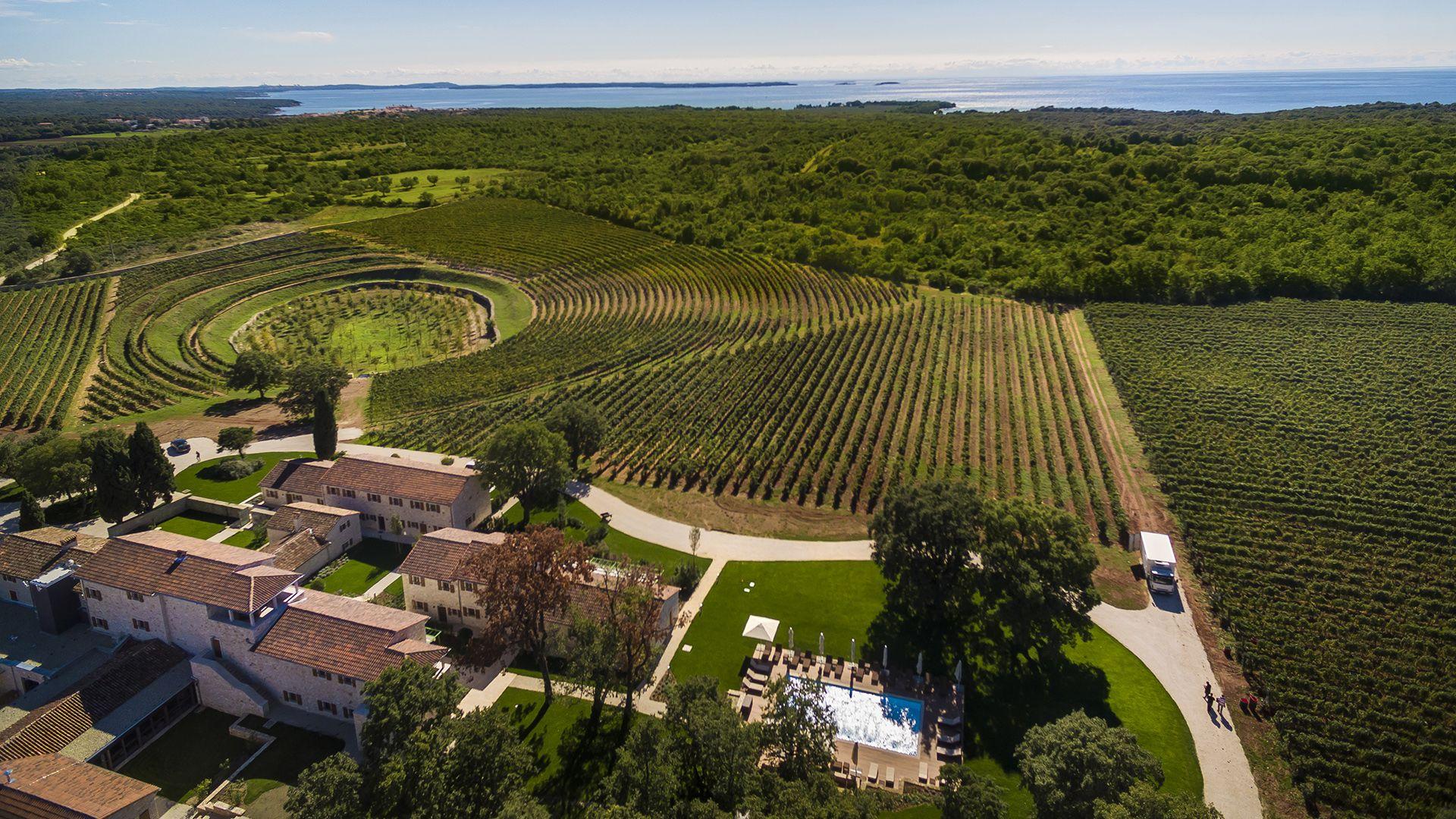 Meneghetti-borászat: Horvátország legjobban őrzött titka