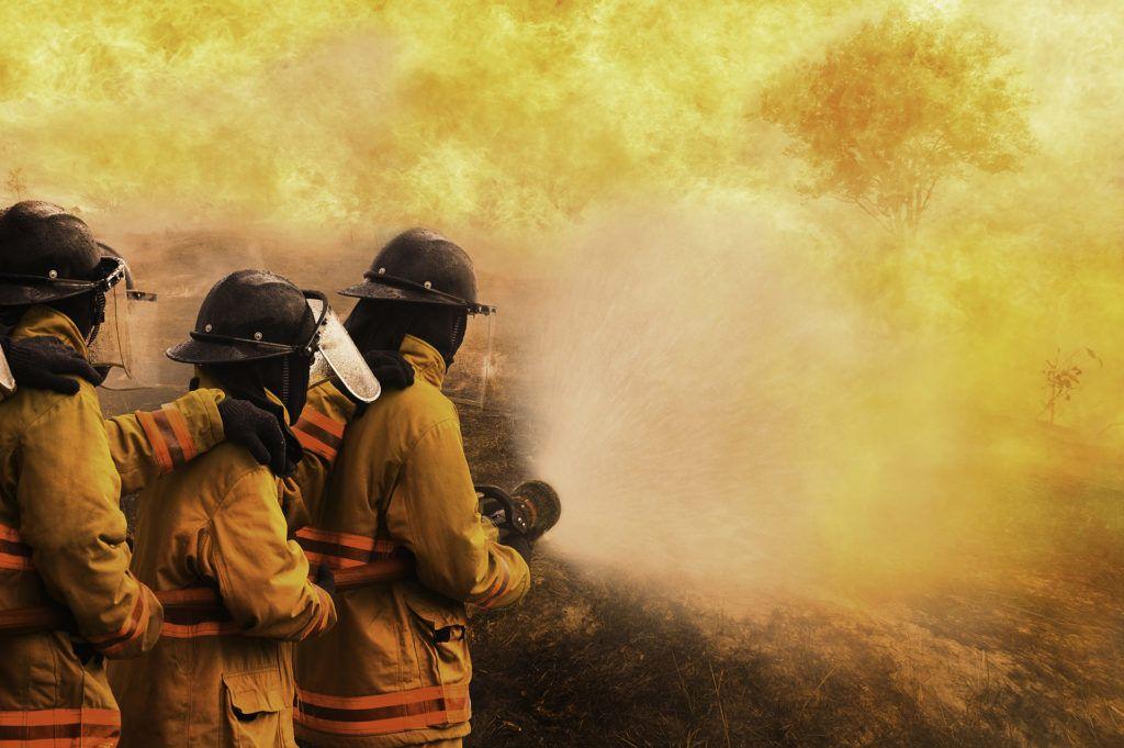 Magyarországnál nagyobb terület égett az ausztrál bozóttüzekben