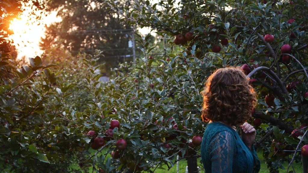 Szeptemberi tanácsok a kerthez Bálin gazdától