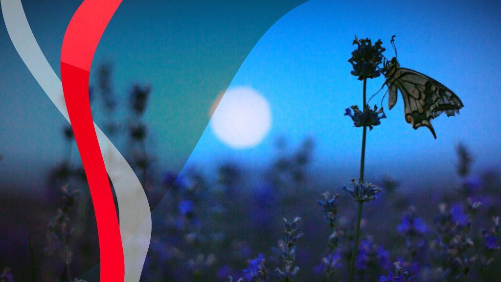 Érezhető meglepetéseket tartogat a fogyó Hold a héten