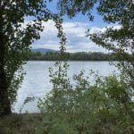 Népsziget és a Duna