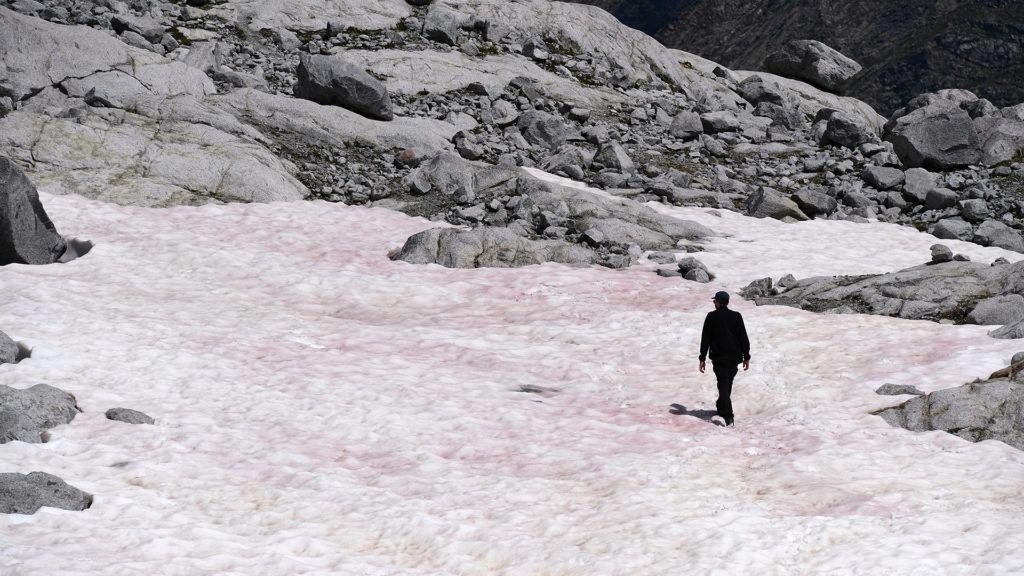 Rózsaszínű lett egy olasz gleccser hava