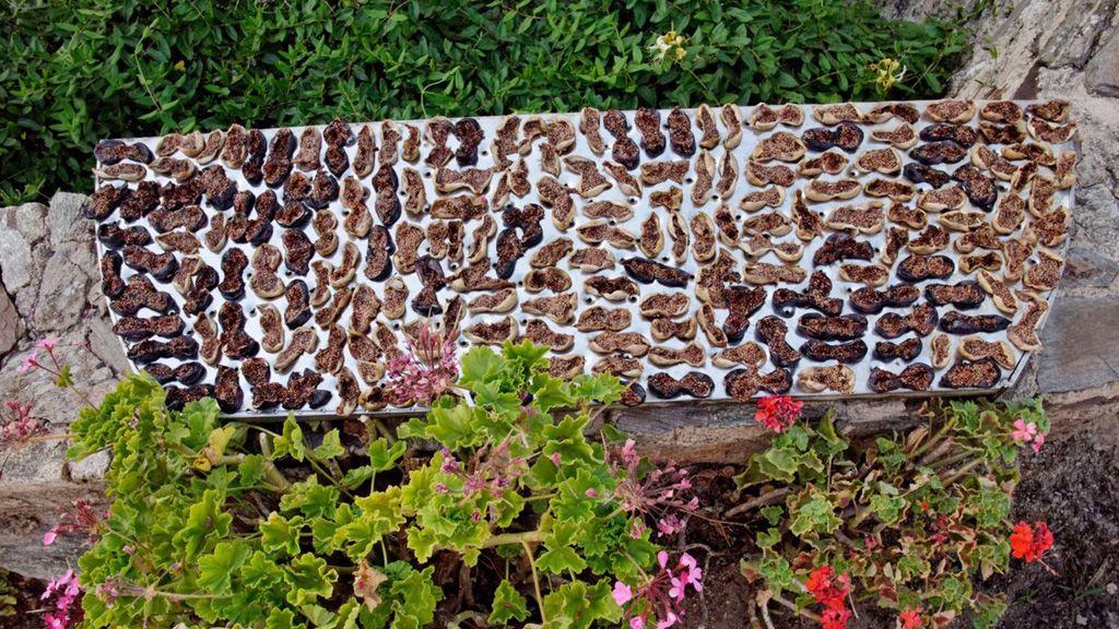 Aszalt füge egy görög teraszon