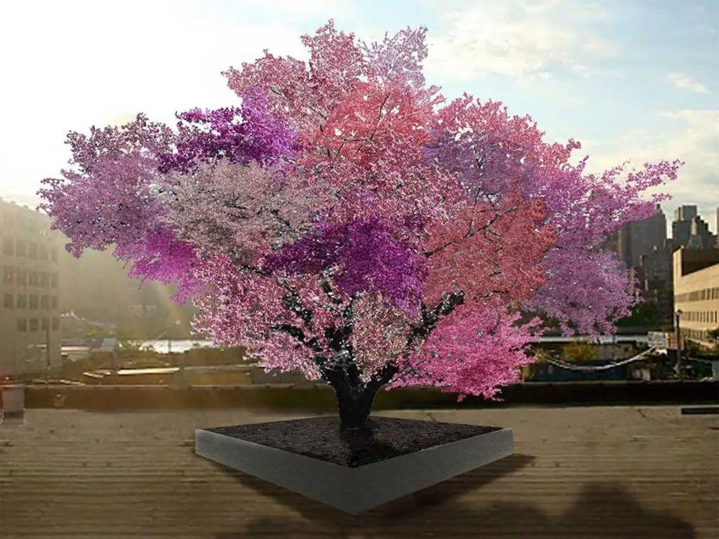 Többféle gyümölcs terem majd a különleges park fáin