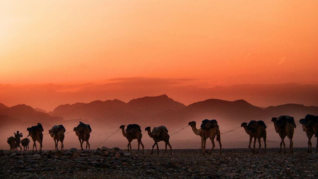 Sivatagi idő lesz hétvégéig