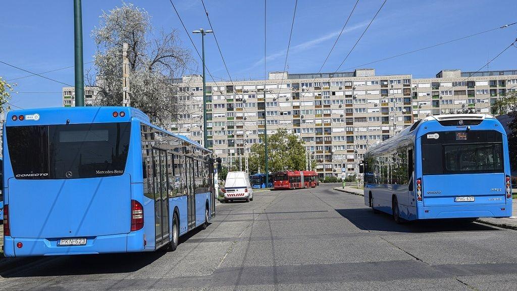 Fotó: MTI/ MTVA/Bizományosi: Róka László