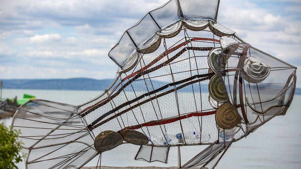 Balatoni hal - Fotó: MTI