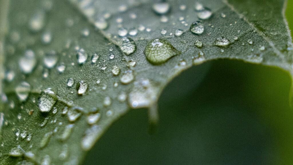 Esős napok jönnek, de továbbra is nagy meleg lesz