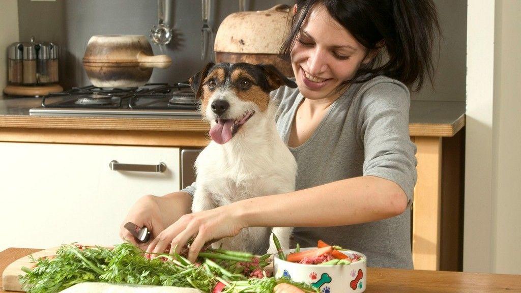 vegetarianizmus, vegetáriánus, B12-vitamin