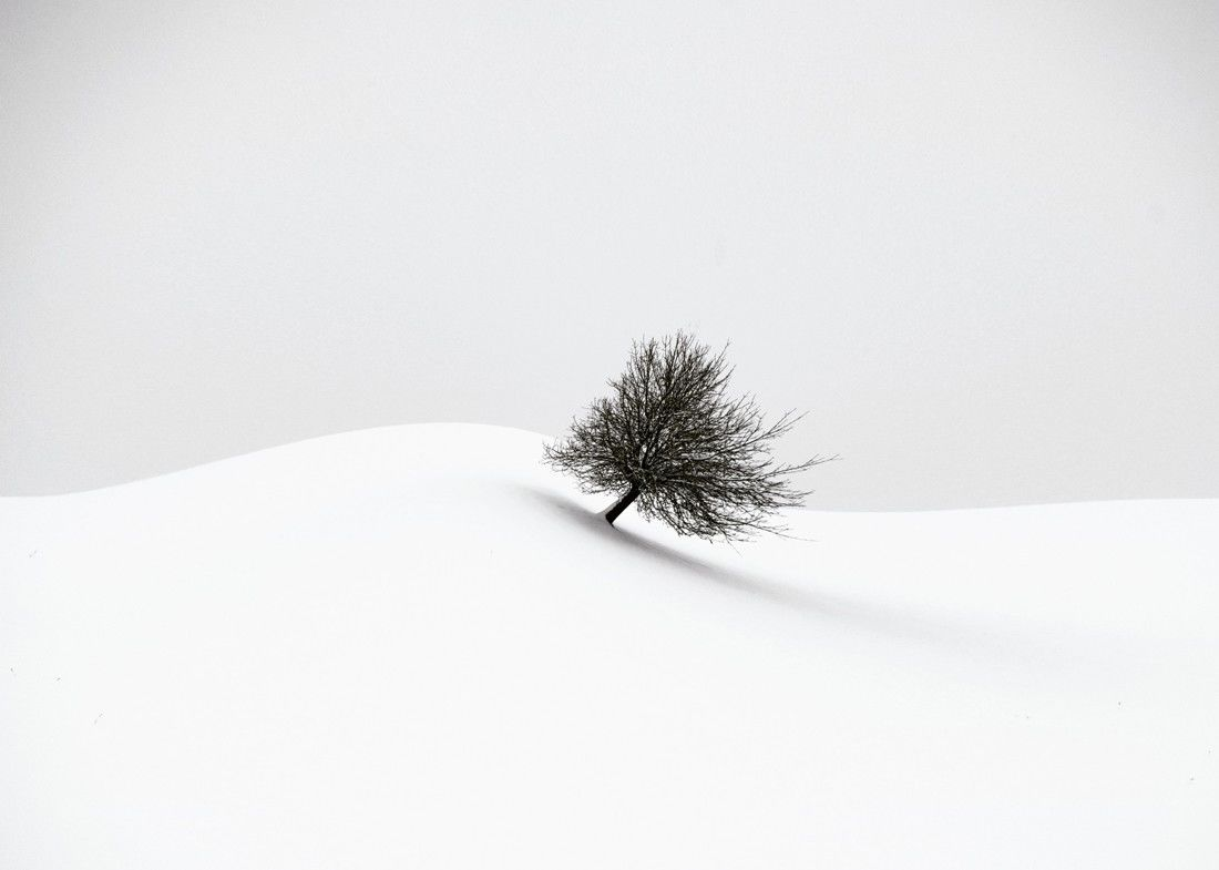Fotó: Renate Wasinger/Minimalist Photography Awards 2020
