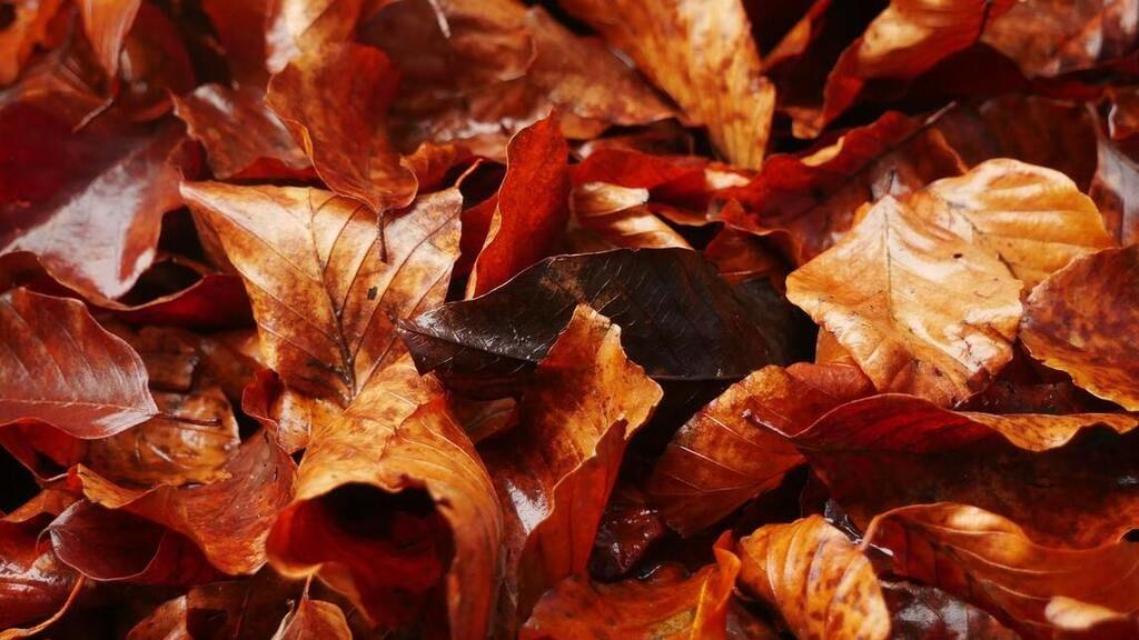 Változik az idő a héten (Fotó: Pexels.com)