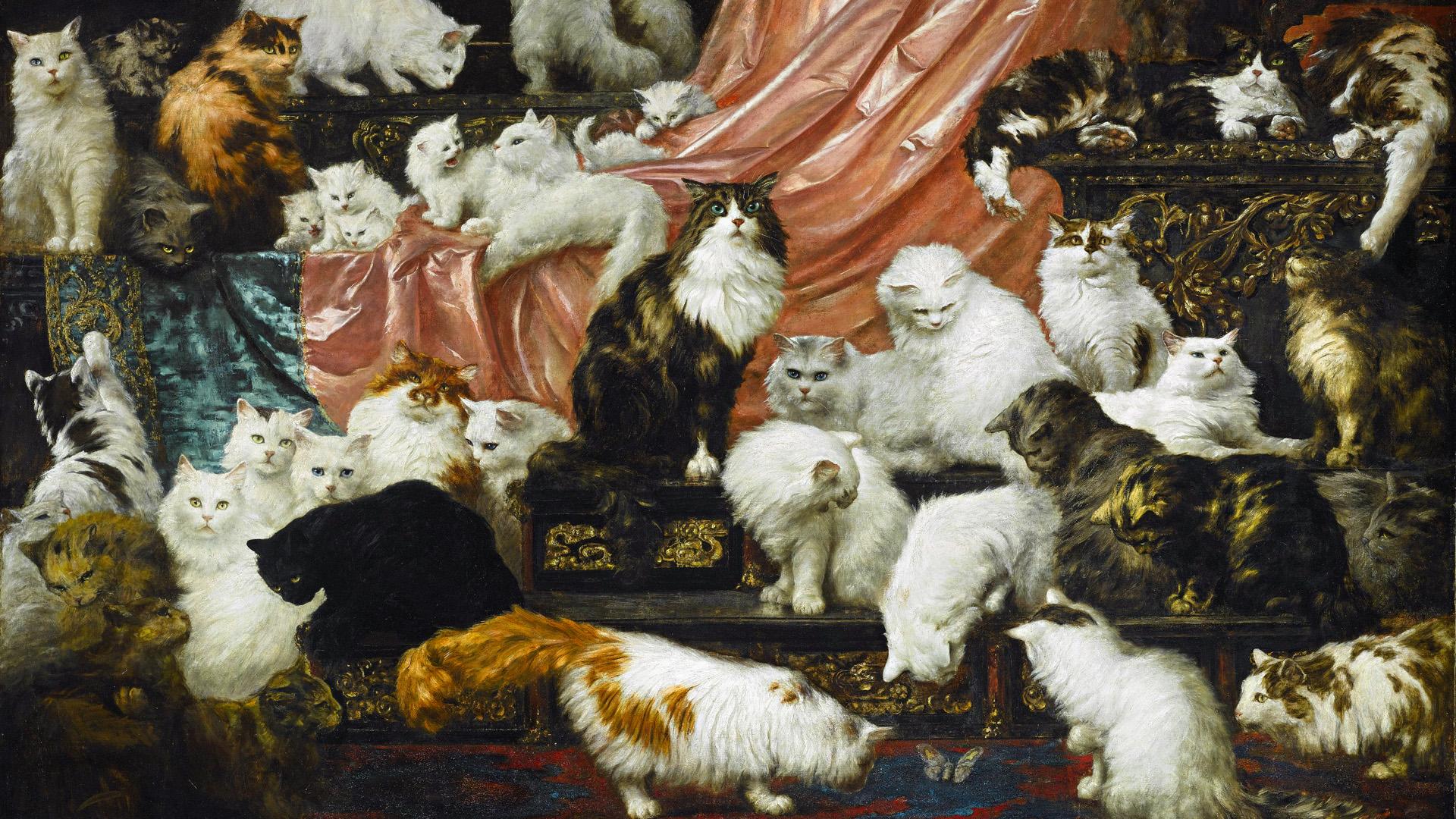 Nincs ennél menőbb macskás kép a világon