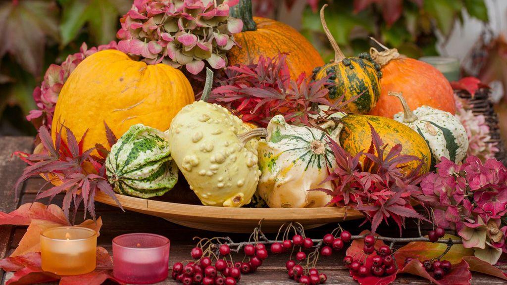 Készíts te is őszi dekorációt! (Fotó: Profimedia)