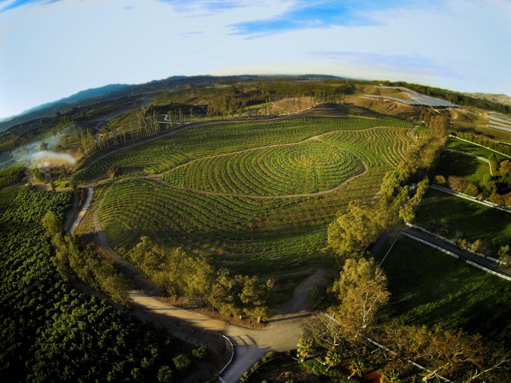 A mi kis óriási farmunk