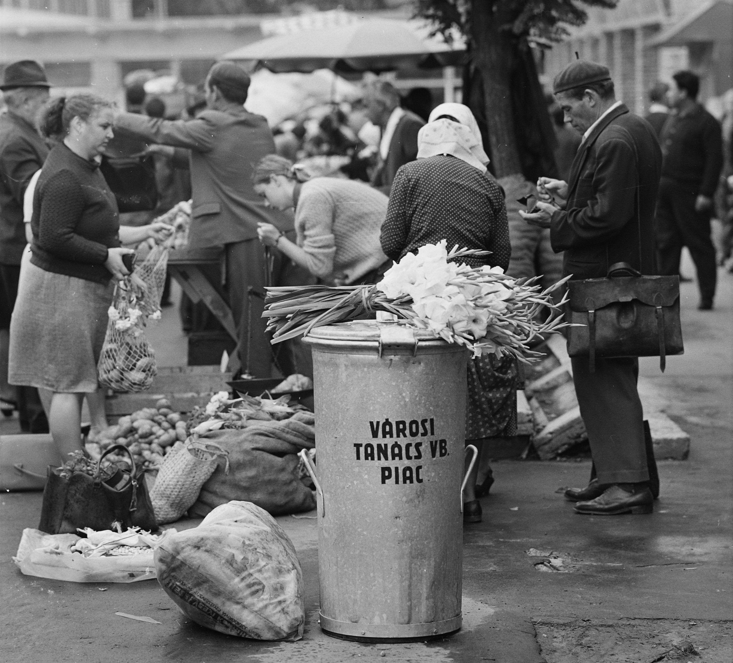 Kardvirág a piacon
