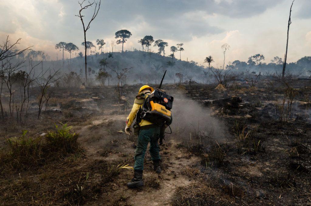 Az IBAMA csapat önkéntes tűzoltója, az amazóniai esőerdőt fenyegető erdőtűzzel küzd Nova Fronteirában, Brazíliában (FOtó: Gustavo Basso/NurPhoto via Getty Images)