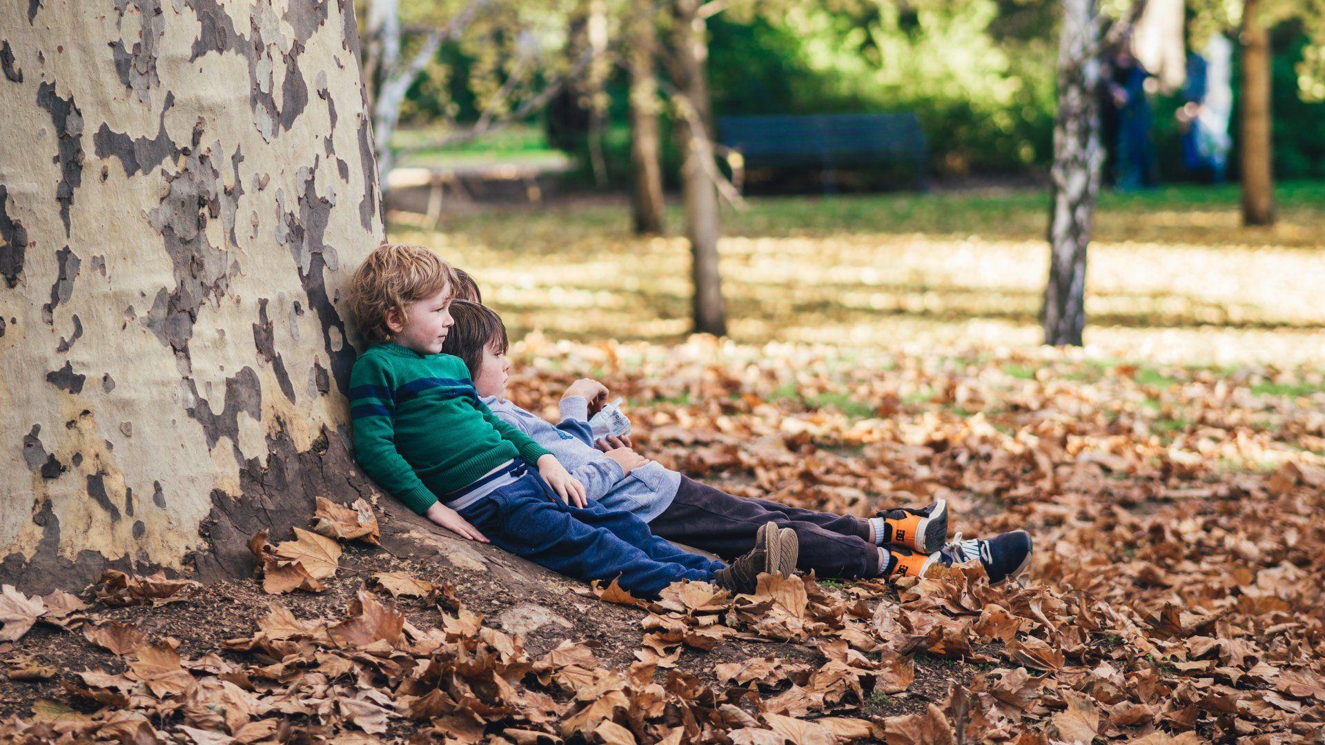 Gyerekek fekszenek egy fa tövében