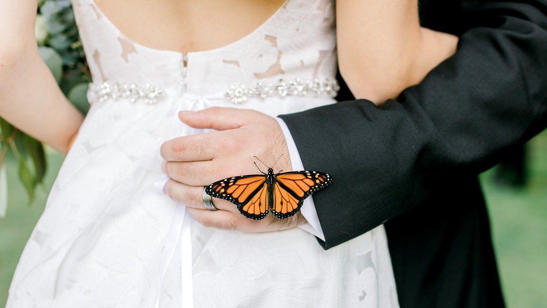 Mesébe illő esküvői fotók készültek egy kíváncsi lepkével