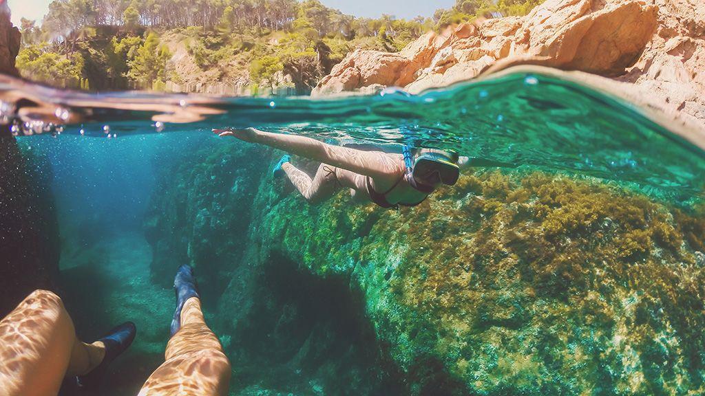 Eltűnhet a nagy sonkakagyló a Földközi-tengerből