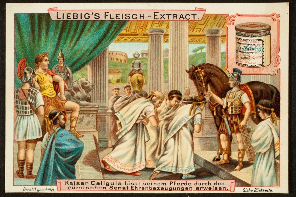 Caligula császár szenátorrá nevezte ki kedvenc lovát