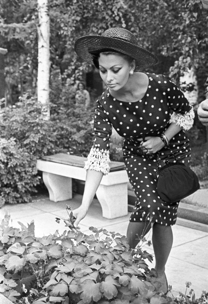Sophia Loren pöttyös ruhában