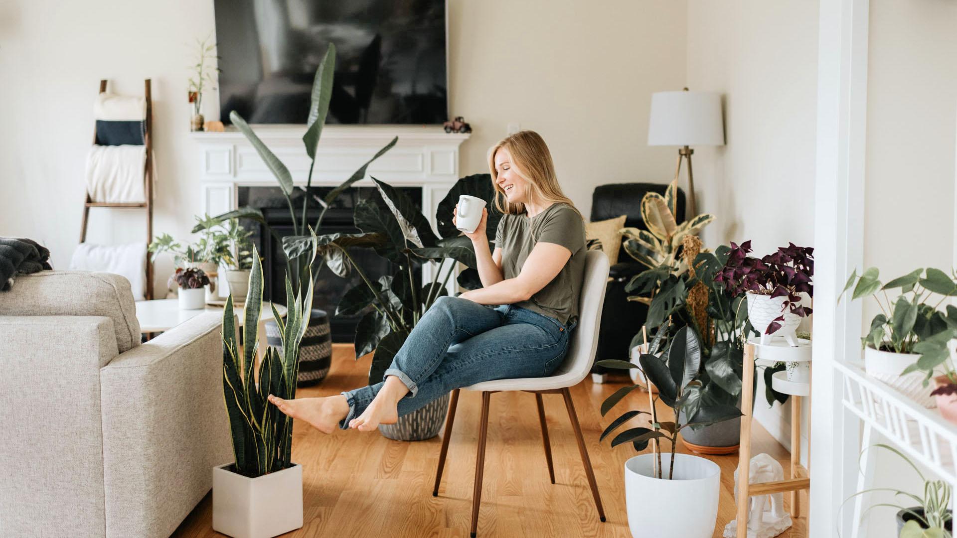 Így leszünk jobb emberek a szobanövényektől
