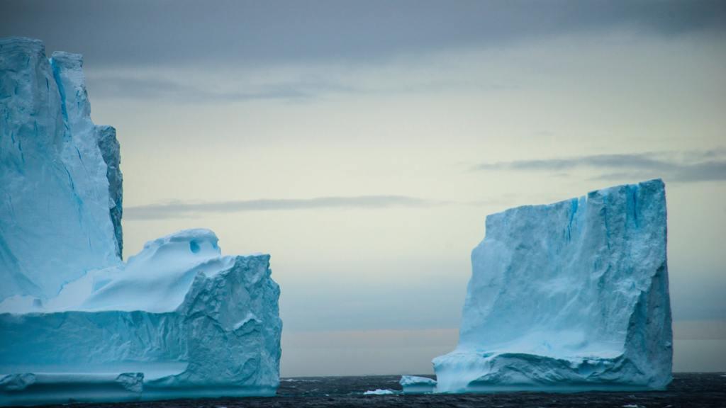 Furcsa dolgot fedeztek fel az Antarktiszon