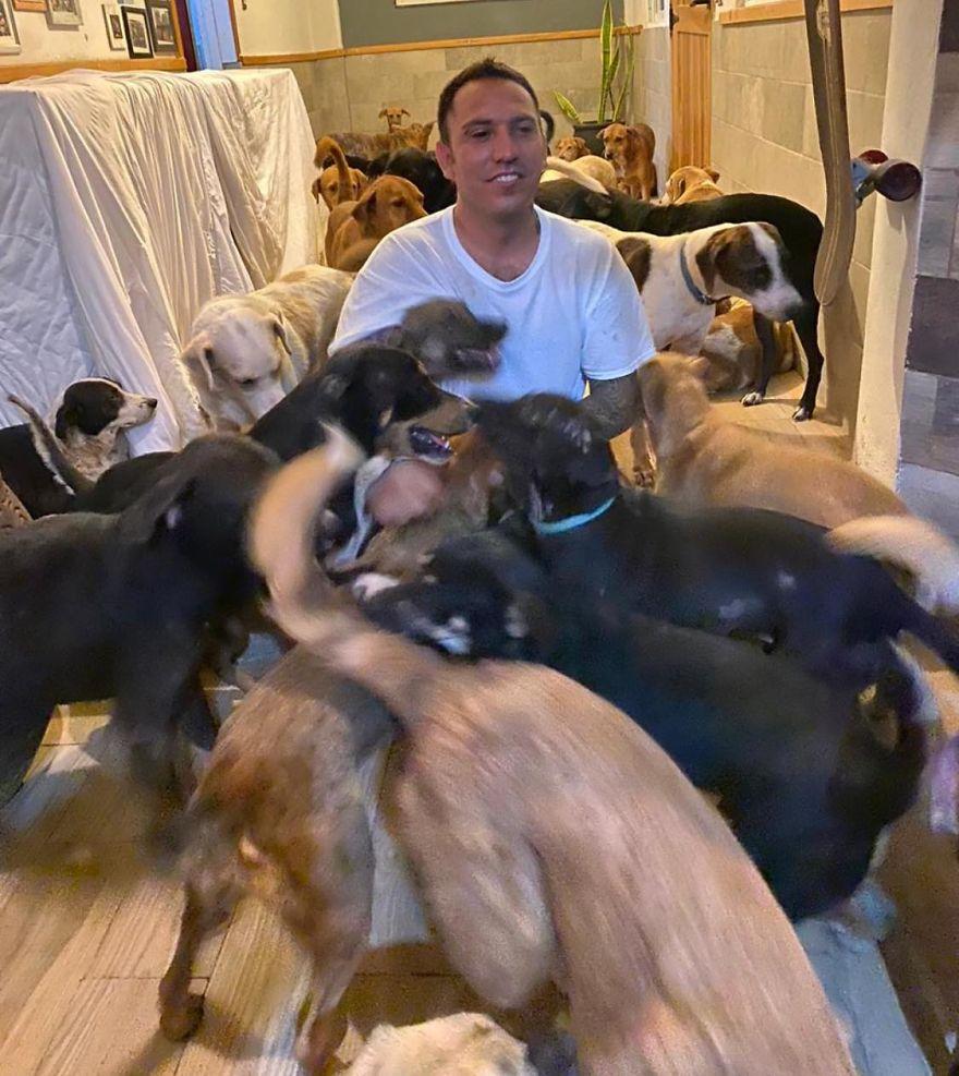 300 kutyát fogadott az otthonába a hurrikán elől.