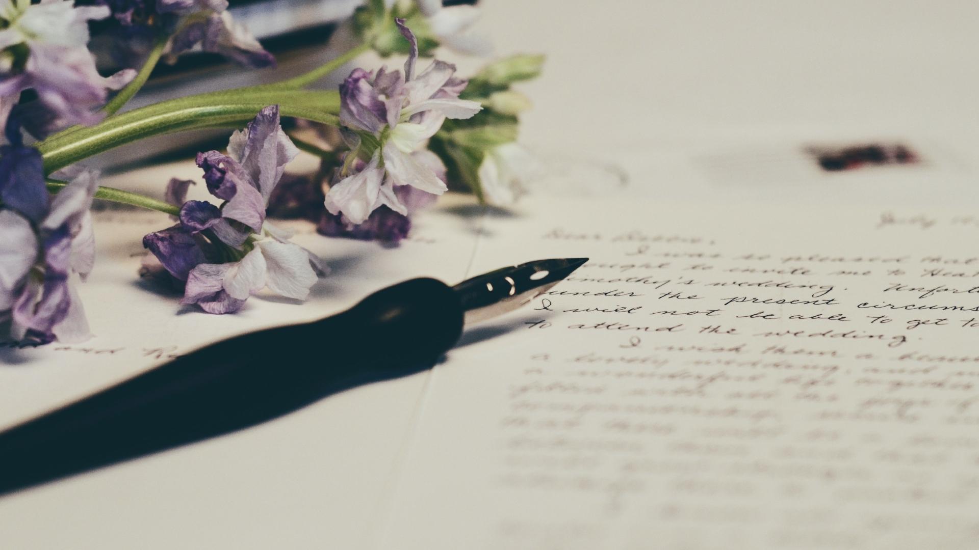 Nyílt levél az anyósnak