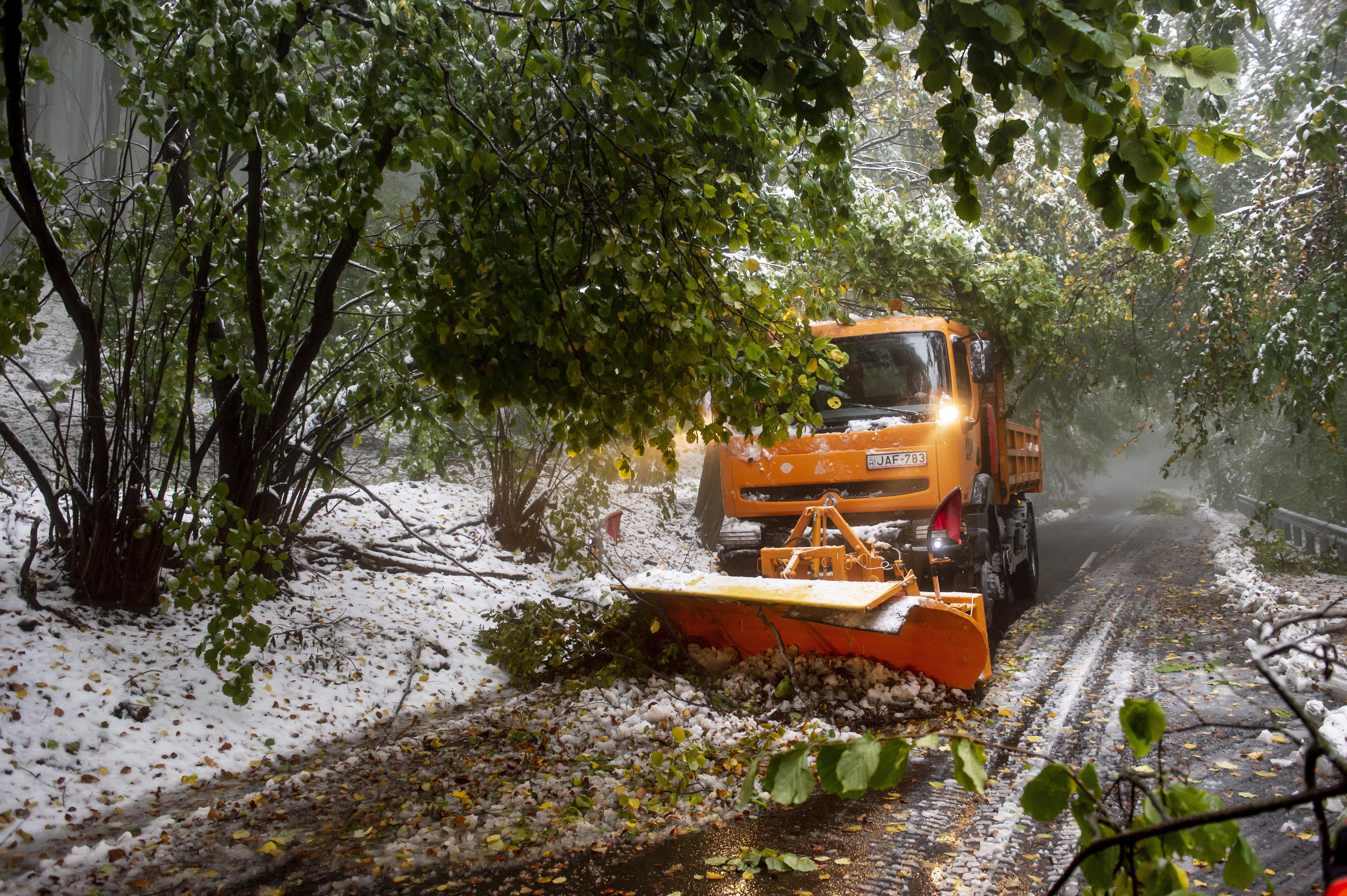 Hókotró dolgozik a Kékestető közelében (fotó: MTI/Komka Péter)