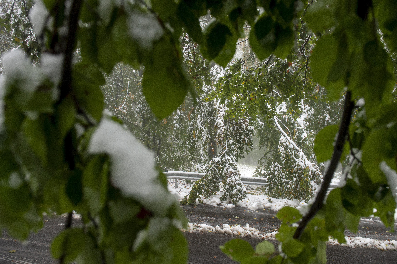 Hó a Kékestető közelében, Gyöngyösnél (fotó: MTI/Komka Péter)