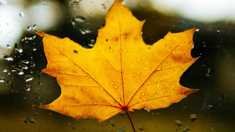 Nem tart már sokáig az októberi nyár.