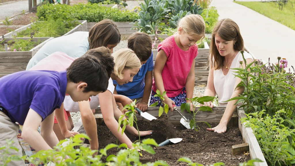 Az iskolakert egy szabadtéri tanterem