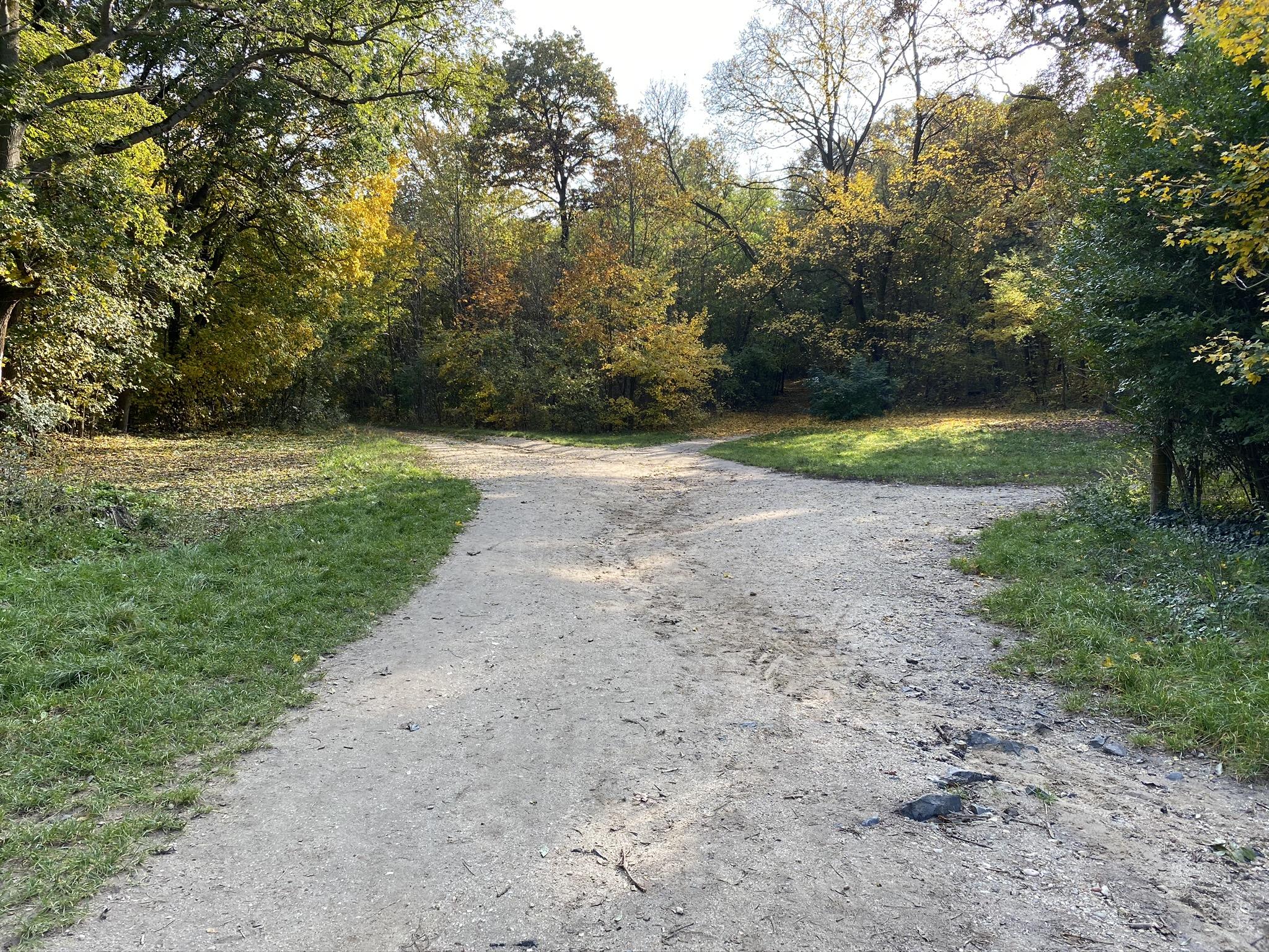Budapesti Kamaraerdő túra