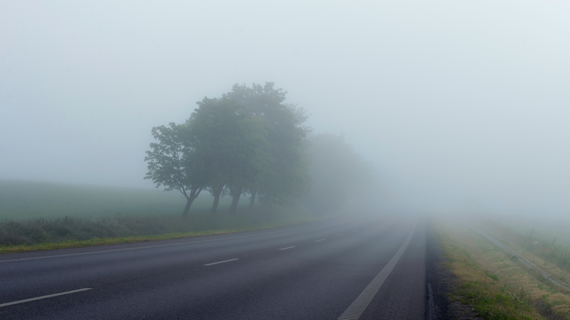 Ködös időjárás