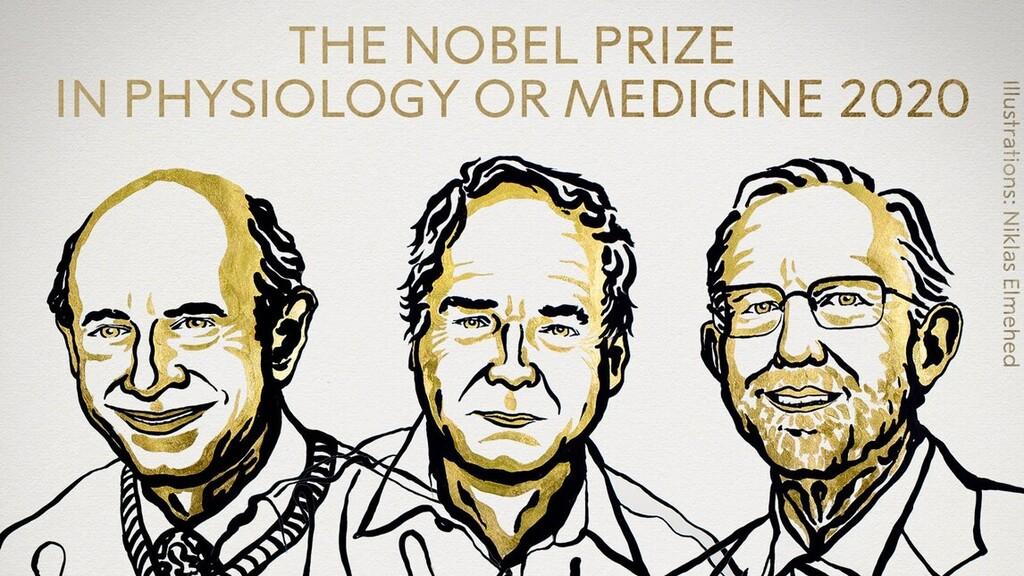 A hepatitis C felfedezői kapják az orvosi Nobel-díjat