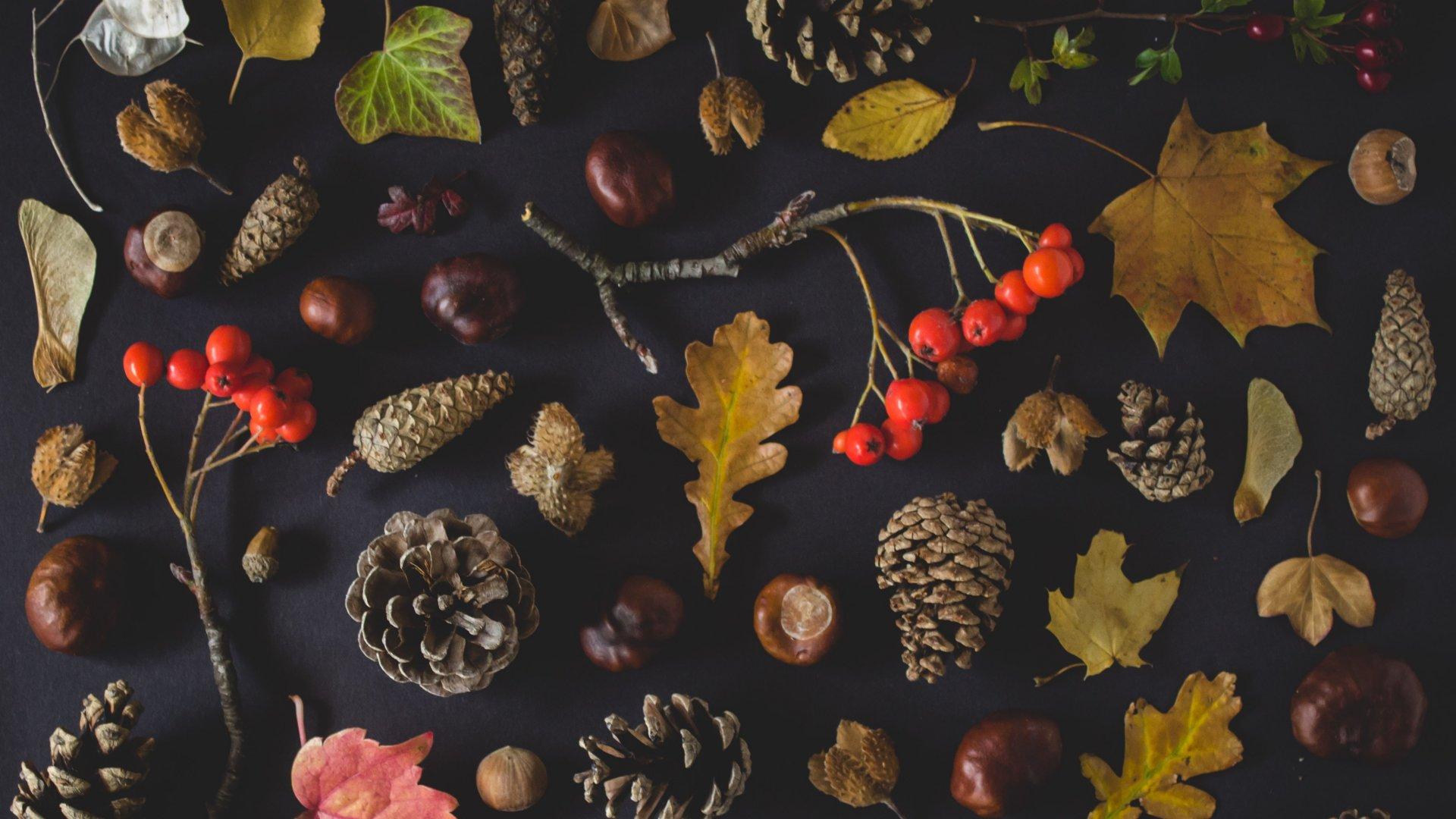 Őszi dekorációs elemek