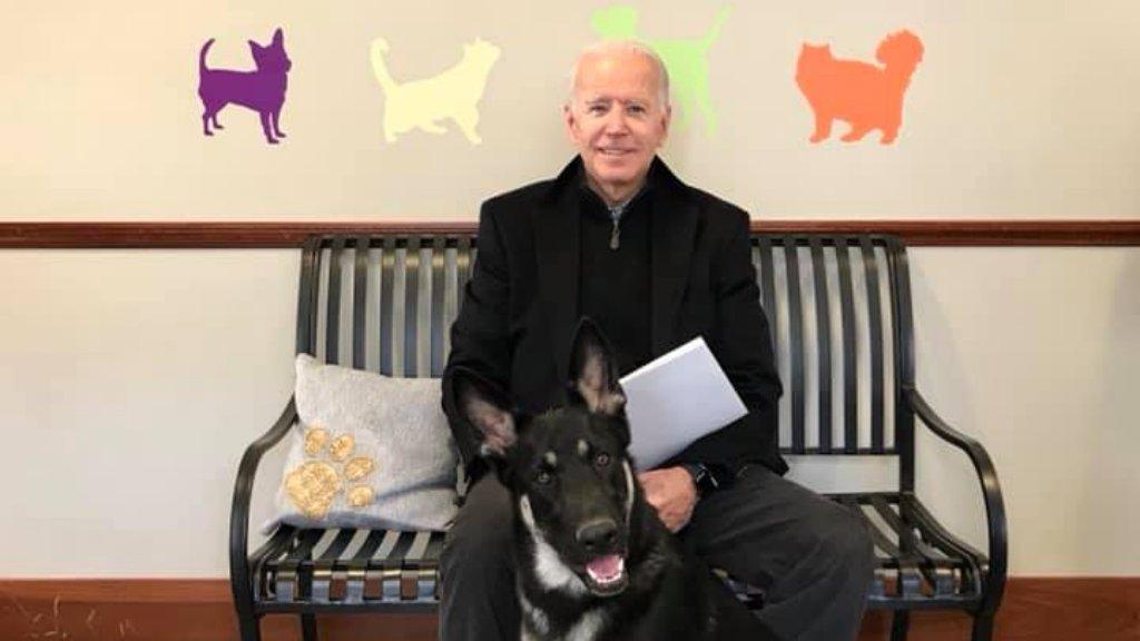 Joe Biden és az örökbe fogadott kutyája