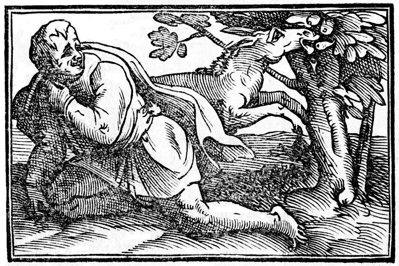 Khrüszipposz, a nagy filozófus éppen halálra röhögi magát egy fügét evő szamáron (forrás: Wikipedia)