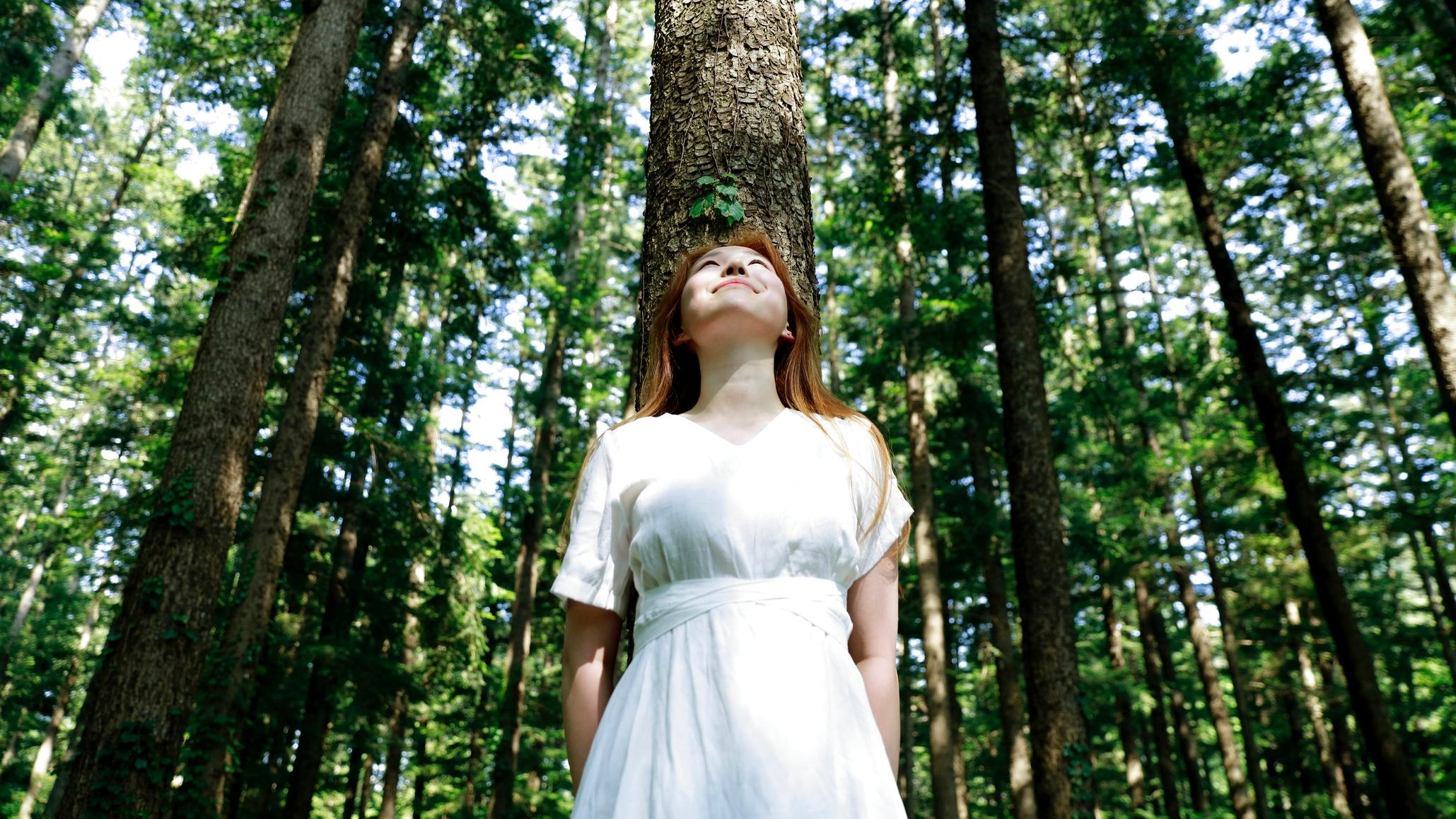 Erdővel álmodtál?