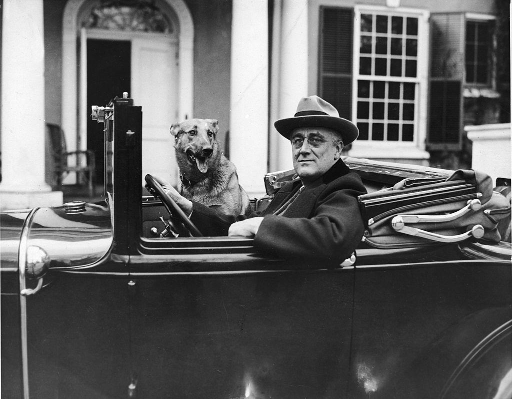 Franklin Delano Rooseveltnek volt a legnépesebb állatsereglete. (Photo by FPG/Getty Images)