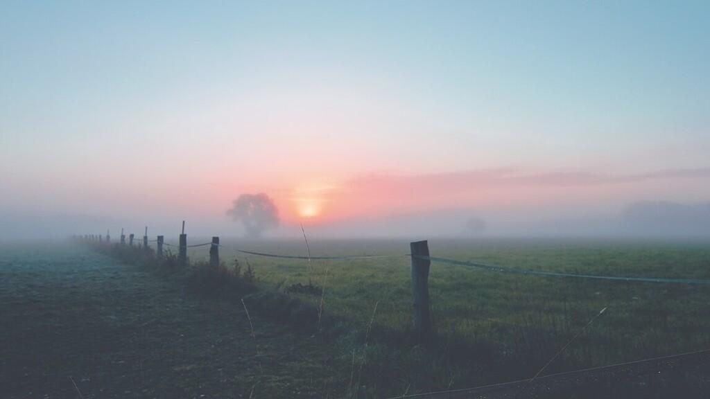 Minden nap számíthatsz a ködre (Fotó: Pexels.com)