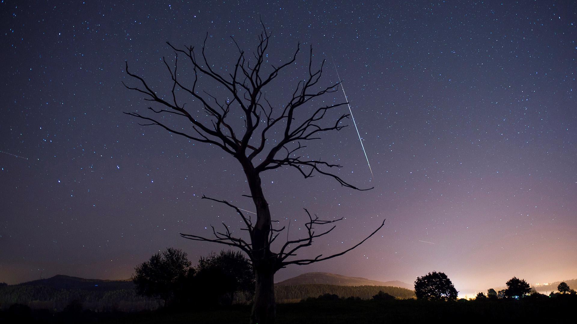 Leonidák meteorraj