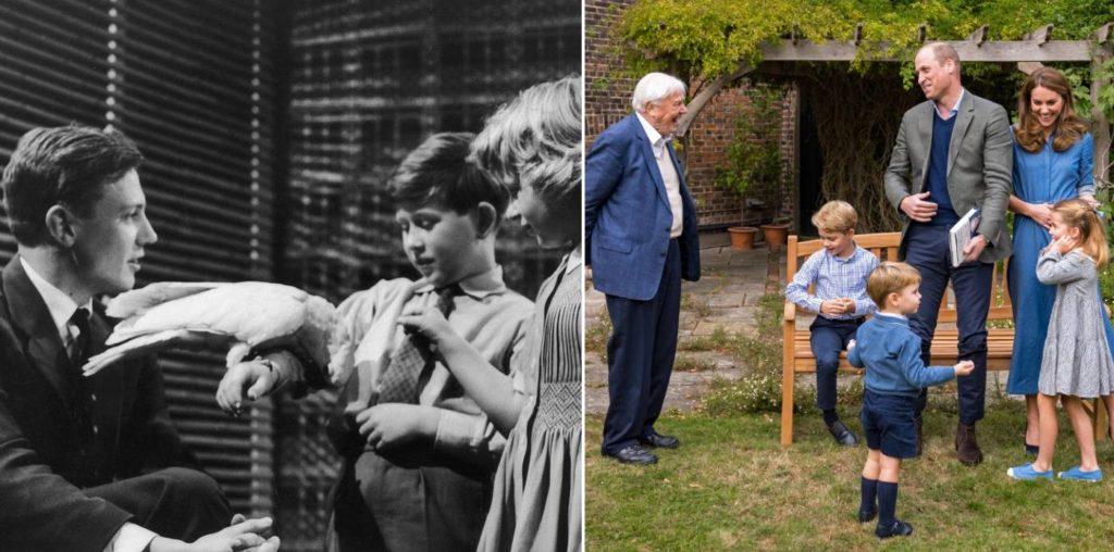 David Attenborough és a királyi gyerekek
