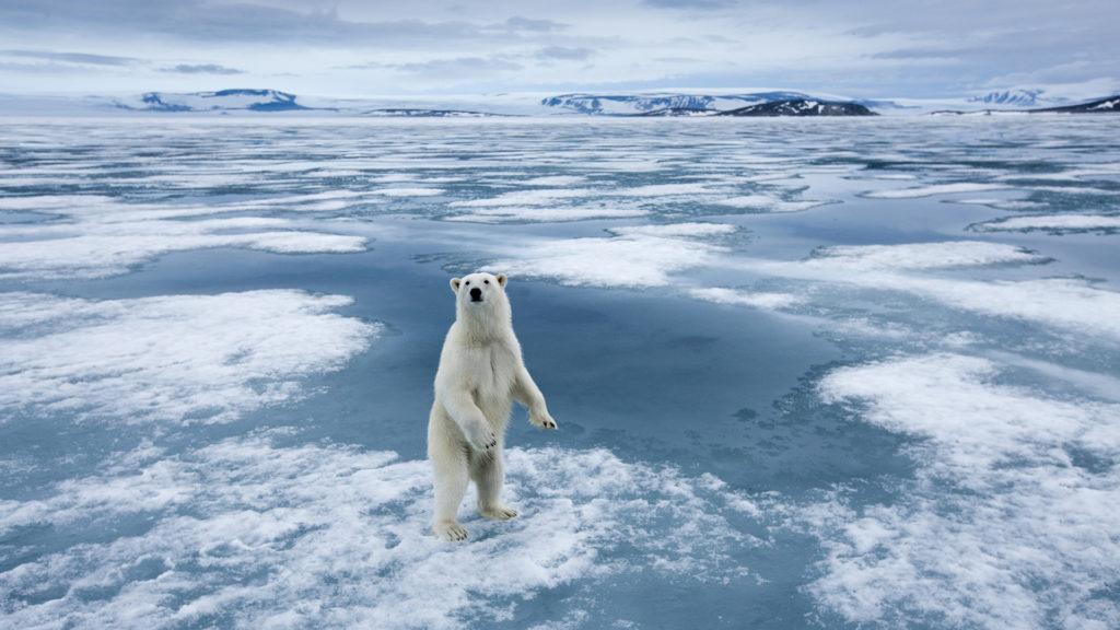 Nem tudjuk már megállítani a klímaváltozást